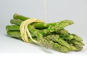 Green fresh asparagus white wall