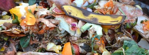 fruit and vegetable waste