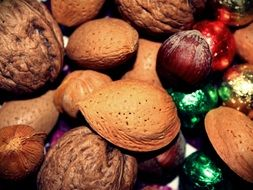 Brown almonds and hazelnuts