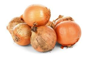 isolated onion bulbs