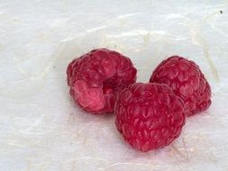 Healthy organic red raspberries
