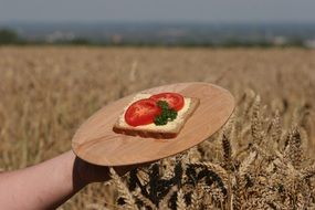 sandwich on the background of a wheat field