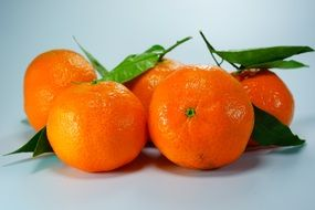 tangerines healthy fruits