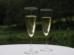 two glasses of champagne on a white table