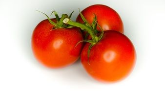 three red tomatoes on a branch