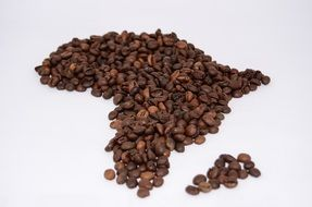 coffee beans Africa shape