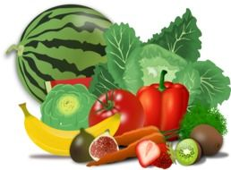 fresh fruits and vegetables, illustration