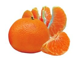 orange tangerine fruit