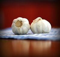 two heads of odorous garlic