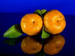 orange mandarin fruit citrus green leaf blue background