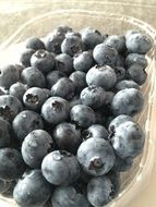 ripe blueberries in a transparent container