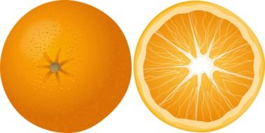 orange fruit mandarin citrus