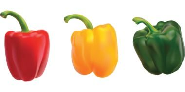 three colorful bell peppers in row