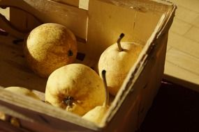 pears in a wooden basket