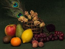still life of fruits flowers and peacock feather