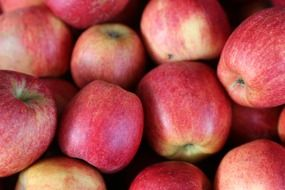crop of juicy apples