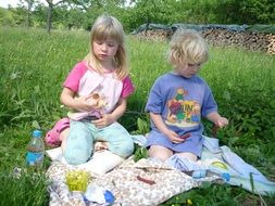 children picnic brothers and sisters