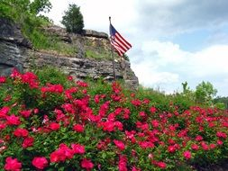 american flag over flowerbed with colorful flowers