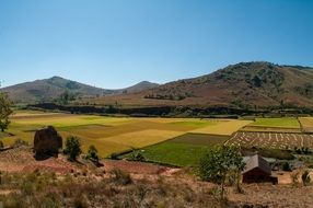 countryside ,madagascar, beautiful view of rice fields