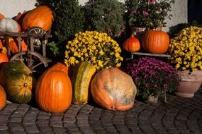 colorful floral and pumpkin decorations