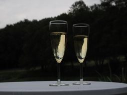 champagne glasses with sparkling wine