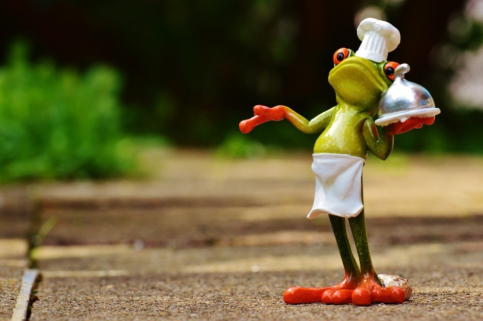 frog cooking