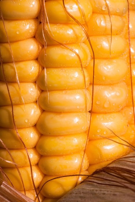 corn kernels on the cob macro