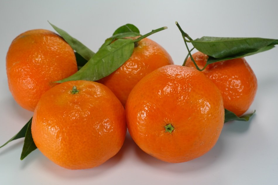 fragrant fresh tangerines
