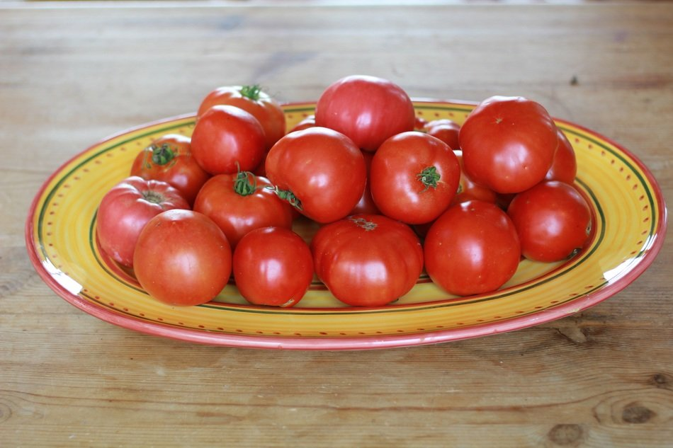 assorted tomatoes on a plate