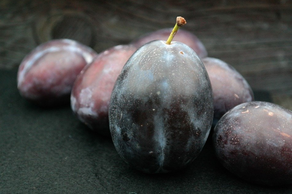 juicy plums with waxy surface