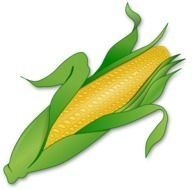 Corn as a graphic illustration