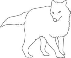 coloring page with an Arctic fox