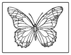 Printable Butterflies Coloring Pages For Kids drawing