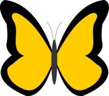 painted black and yellow butterfly