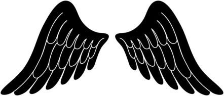 Black and white Angel Wings, drawing