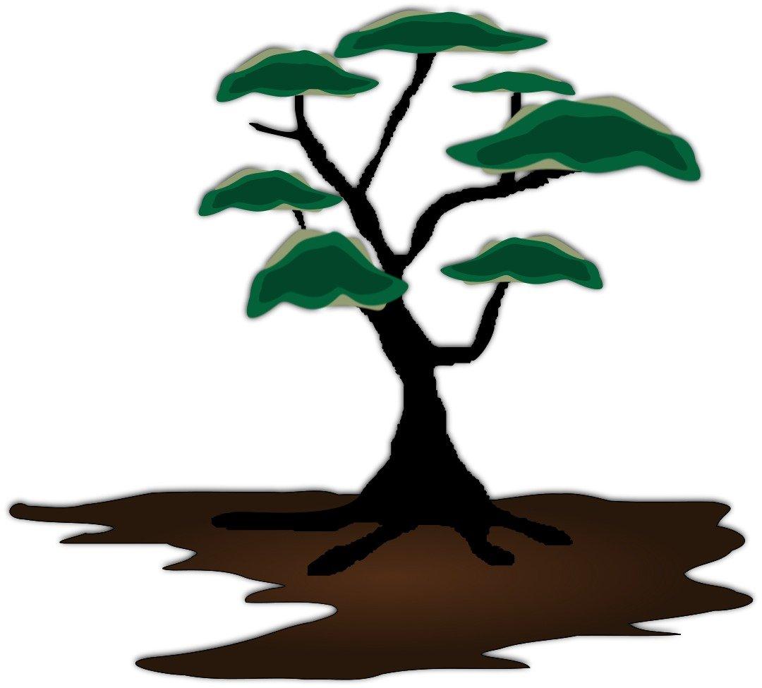 Cartoon Dead Tree Drawing Free Image