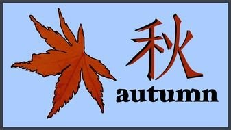 autumn maple tree and hieroglyph