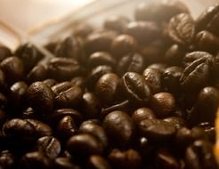 roasted coffee beans close-up
