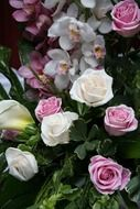 pink and white roses and orchids