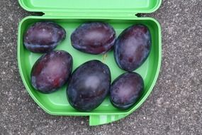 ripe plums in a lunch box