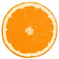 orange clementine fruit drawing