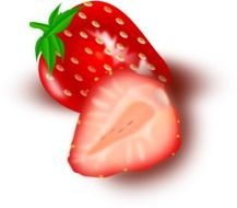 ripe shiny strawberries in a cut as a graphic image