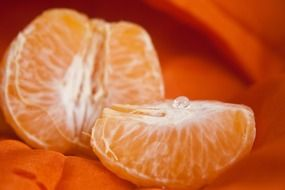 tasty orange slice