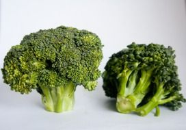 broccoli as natural food