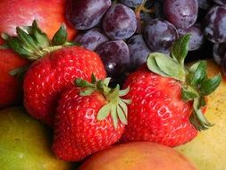 juicy bowl fruits strawberry grape apple