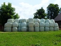hay bales agriculture