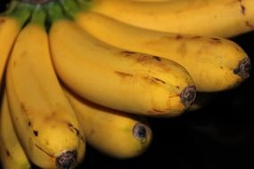 bunch of yellow bananas close-up