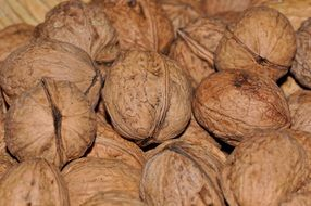 walnuts nuts