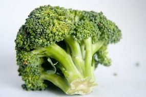 Green healthy fresh broccoli