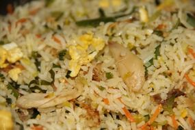 fried rice in indian cuisine